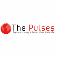 THE PULSES